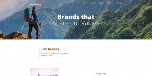 hummingbirdbrands.com